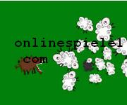 Sheep Herd spiele online